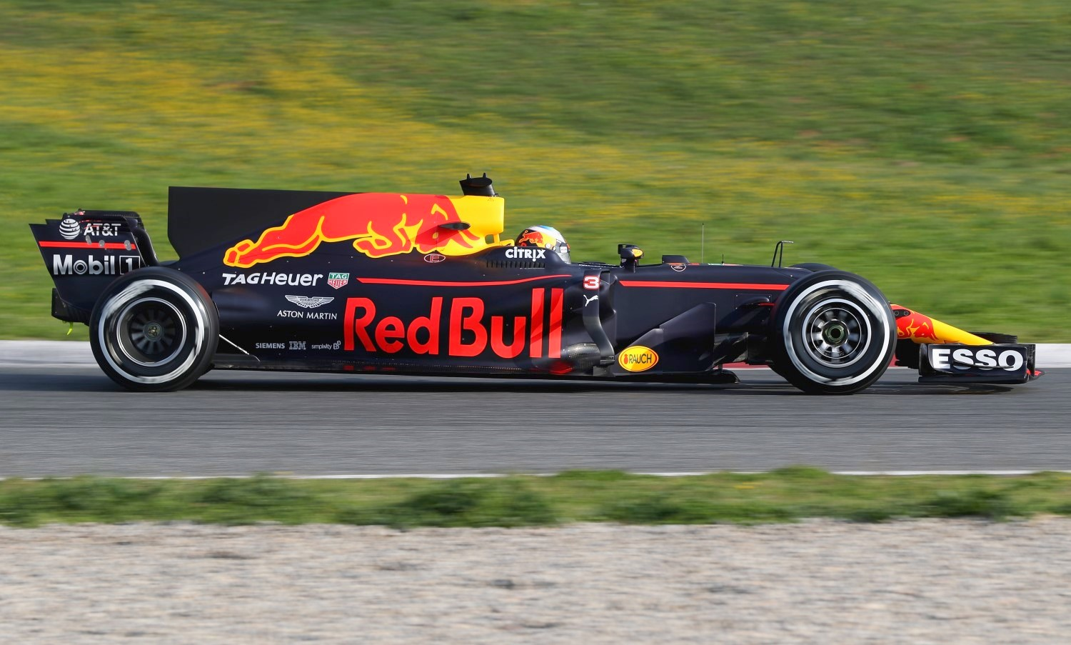 Riccardo in the Red Bull