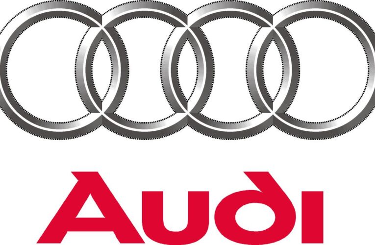 Audi will not design any new combustion engines